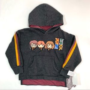 Harry Potter Gray Charcoal Fleece Hooded Pullover